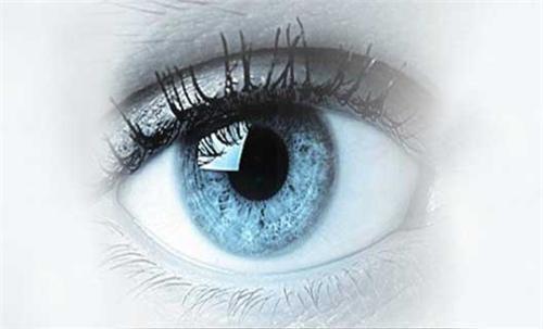 Eye banks to be built in all medical college hospitals of Bihar till Dussehra: Sushil Modi
